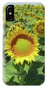 Sunflower And Honeybees July Two K O Nine  II IPhone Case