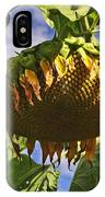 Sunflower At Fall IPhone Case