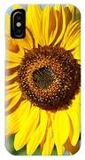 Sunflower Small File IPhone Case