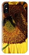 Sunflower Up Close IPhone Case
