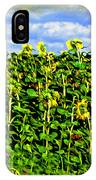 Sunflowers In France IPhone Case