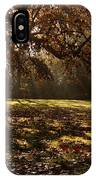 Sunlight In Trees IPhone Case