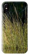 Sunlight On Grass Original IPhone Case