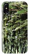 Sunlit Bamboo IPhone Case
