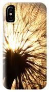 Sunlit Goatsbeard Seed Pod In Scenic Saskatchewan IPhone Case