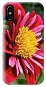 Sunny Center IPhone Case