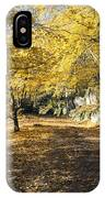 Sunny Day In The Autumn Park IPhone Case
