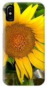 Sunny In Md 4 IPhone Case