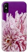 Sunset Dahlia 1 IPhone Case