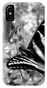 Swallowtail Butterfly And Plum Blossoms IPhone Case