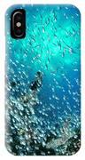 Swallowtail Cardinalfish School IPhone Case