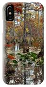 Swamp In Fall IPhone Case