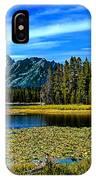 Swan Lake II IPhone Case