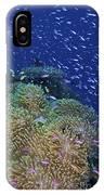 Swarms Of Small Baitfish Swim IPhone Case