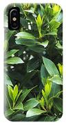 Sweet Bay (laurus Nobilis) IPhone Case