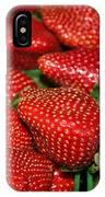 Sweet Florida Strawberries IPhone Case