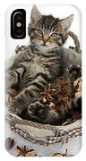 Tabby Kitten In Potpourri Basket IPhone Case