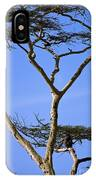 Tall Serengeti Tree And Baboon IPhone Case