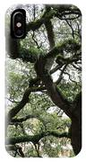 Tampa Trees IPhone Case