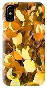 Taos Gold Iv IPhone Case