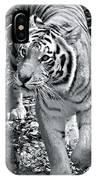 Terrific Tiger IPhone Case
