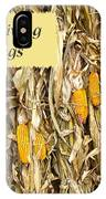 Thanksgiving Greeting Card - Dried Corn Stalks IPhone Case