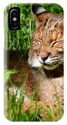 The Bobcat's Afternoon Nap IPhone Case