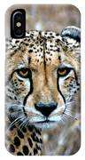 The Cheetah Stare IPhone Case