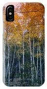 The Colors Of Fall II IPhone Case