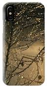 The Frozen Branches Of A Small Birch IPhone Case