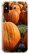 The Great Pumpkin Patch IPhone Case