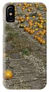 The Great Pumpkin Patch Trail IPhone Case