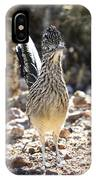The Greater Roadrunner  IPhone Case