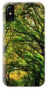 The Mall In Fall IPhone Case