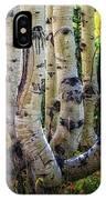 The Multiple Trunk Aspen Tree IPhone Case