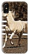 The Prance IPhone Case