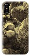 The Produce Of The Earth In Sepia IPhone Case