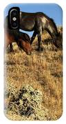 The Women Of Theodore Roosevelt IPhone Case