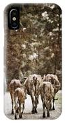 They Walk Together IPhone Case