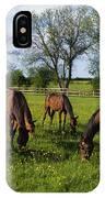 Thoroughbred Horses, Yearlings, Ireland IPhone Case
