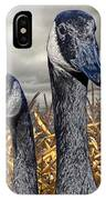 Three Canada Geese In An Autumn Cornfield IPhone Case