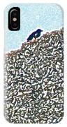 Three Crows And Oyster Shells IPhone Case