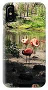Three Flamingos IPhone Case