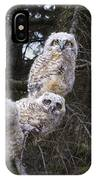 Three Great Horned Owl Bubo Virginianus IPhone Case