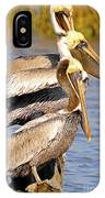 Three Pelicans On A Stump IPhone Case