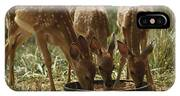 Three White-tailed Deer Fawns IPhone Case