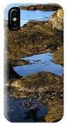 Tidepool In Maine IPhone Case
