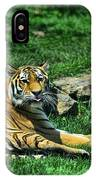 Tiger - Endangered - Lying Down - Tongue Out IPhone Case