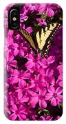 Tiger In The Phlox 5 IPhone Case