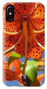 Tiger Lily Close Up IPhone Case